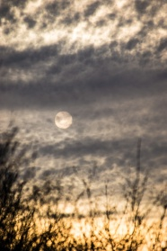 sun resembling the moon while obscured by clouds