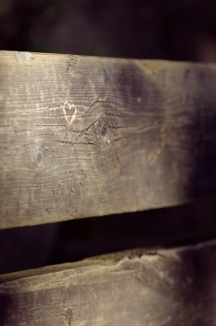 tiny heart on a bench, Cambridge Ontario